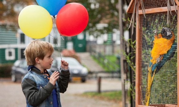 Familiefilm Dikkertje Dap in première op 37e editie Nederlands Film Festival